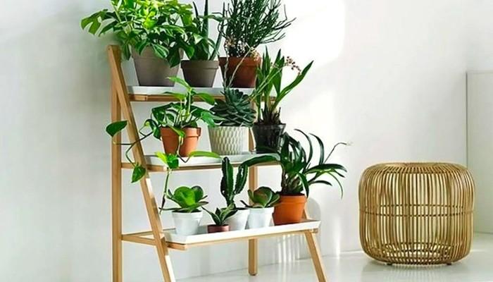Cele mai comune tipuri de suporturi de flori si cum sa le utilizezi pentru casa ta